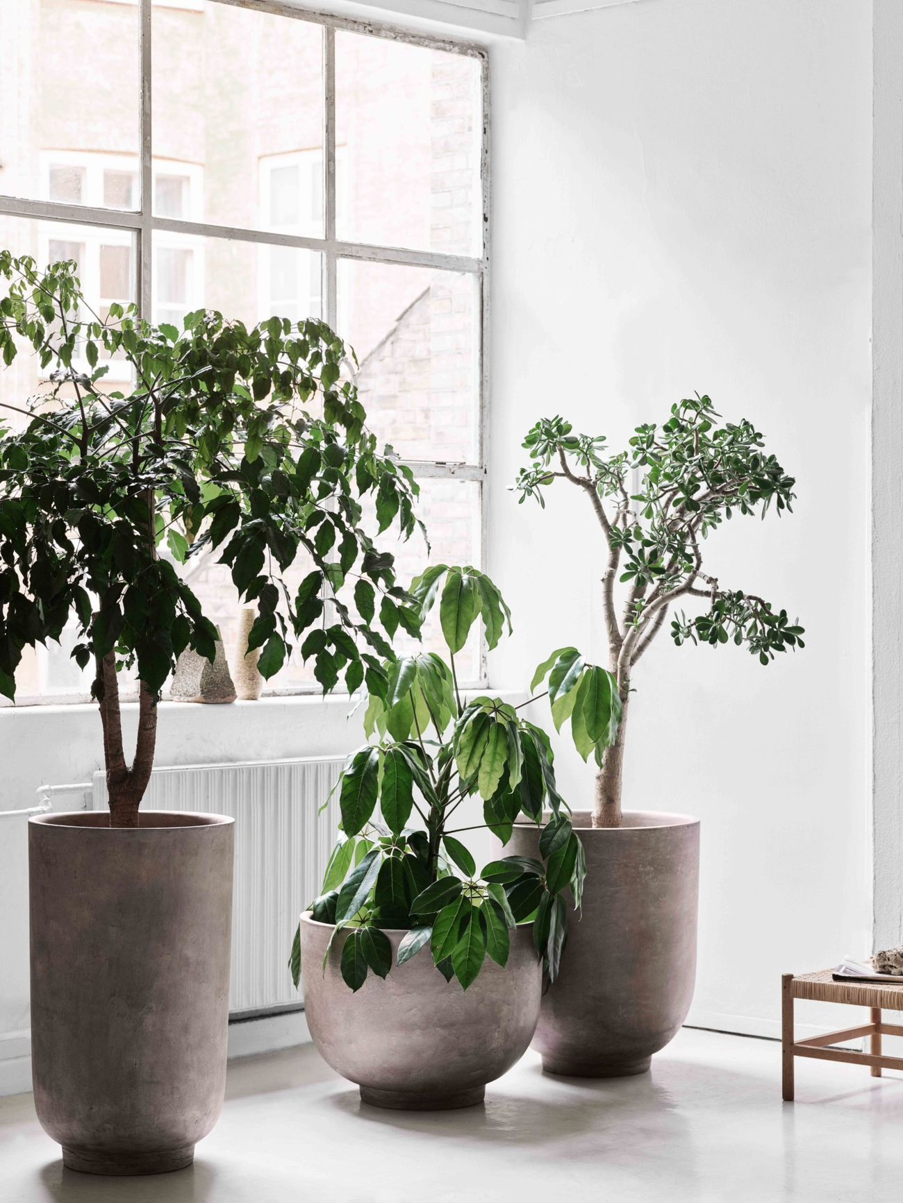 https://www.fundesign.nl/media/catalog/product/a/t/atd_lifestyle_2020_planter_sc43_sc44_sc45_web-1500x2000.jpg